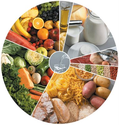 alimento saudavel colesterol